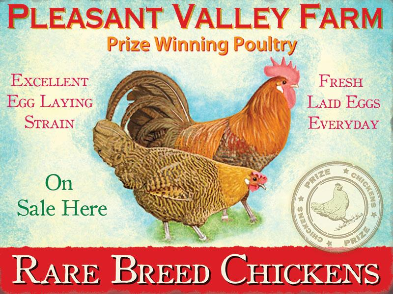 Pleasant Valley Chickens Metal Wall Sign